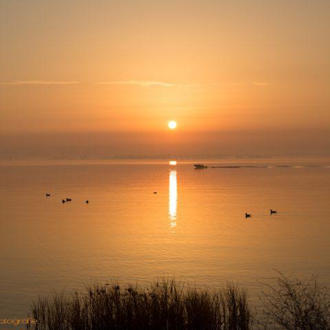Sonnenaufgang überm Strelasund und meer