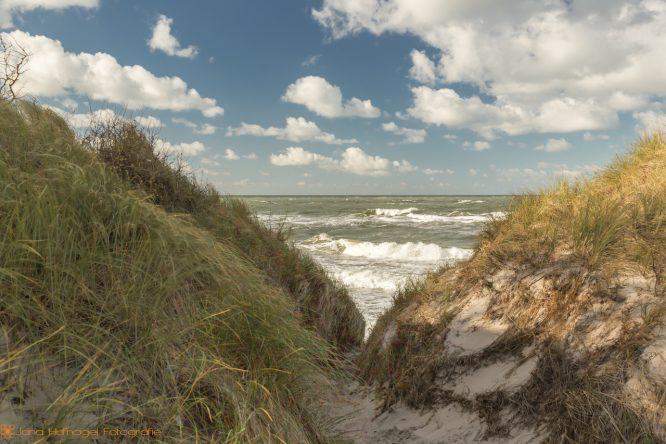 Region Ostsee - Weststrand Darß