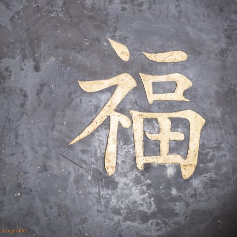 Wandgestaltung Privatwohnung - Fu